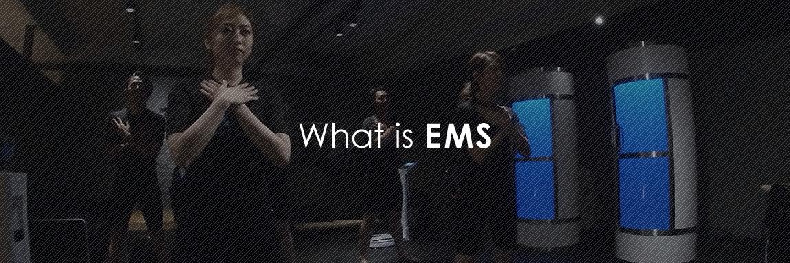 EMSとは?